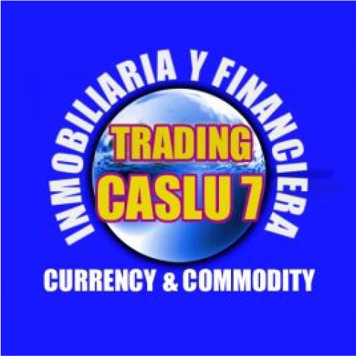 Tproyecto.es - Trading-Caslu7